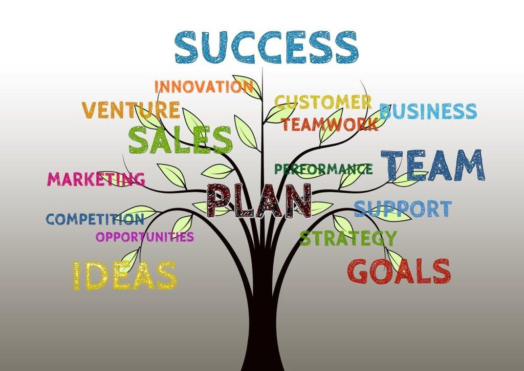 fasi del successo